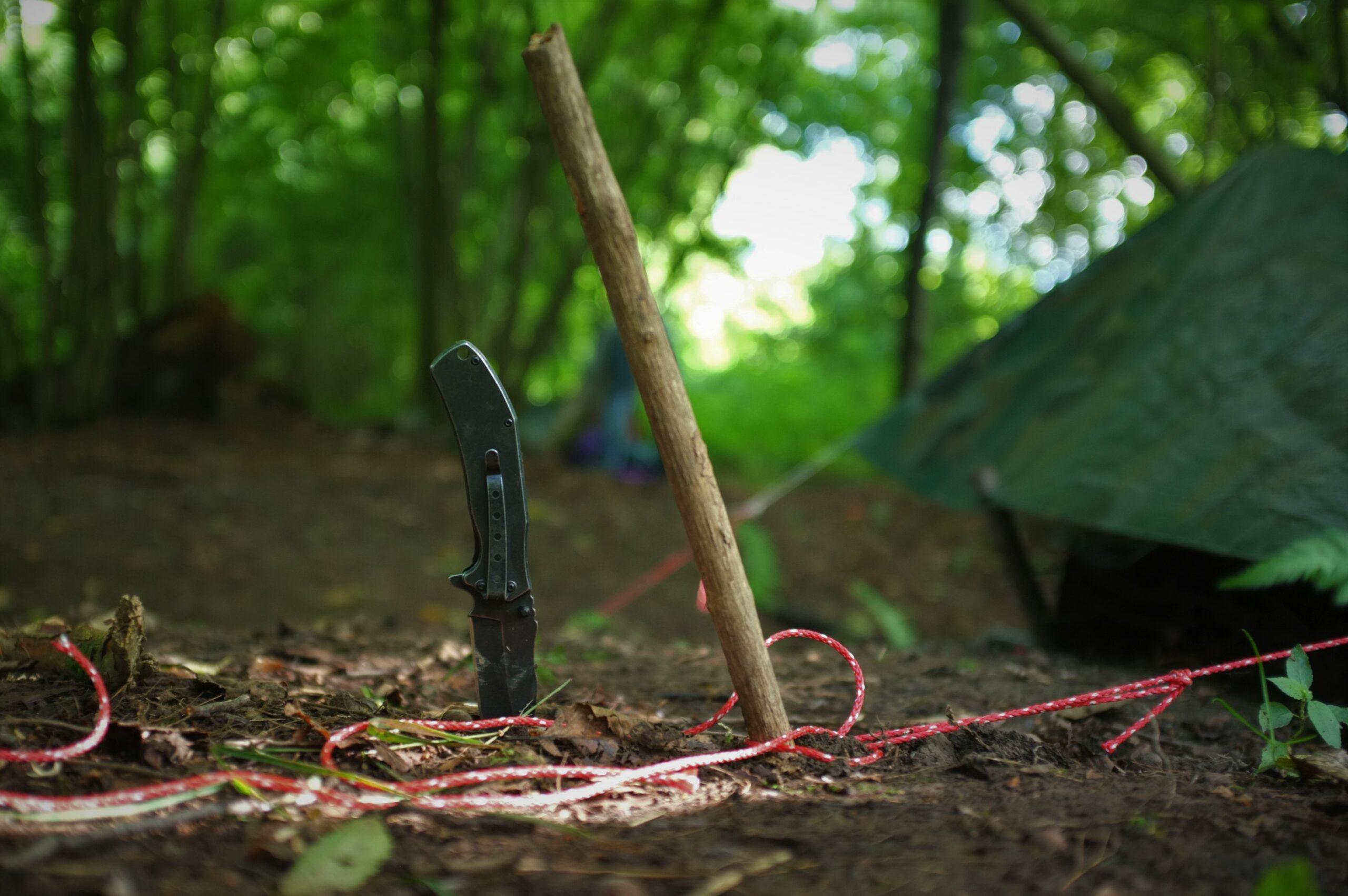 bushcraft survival training