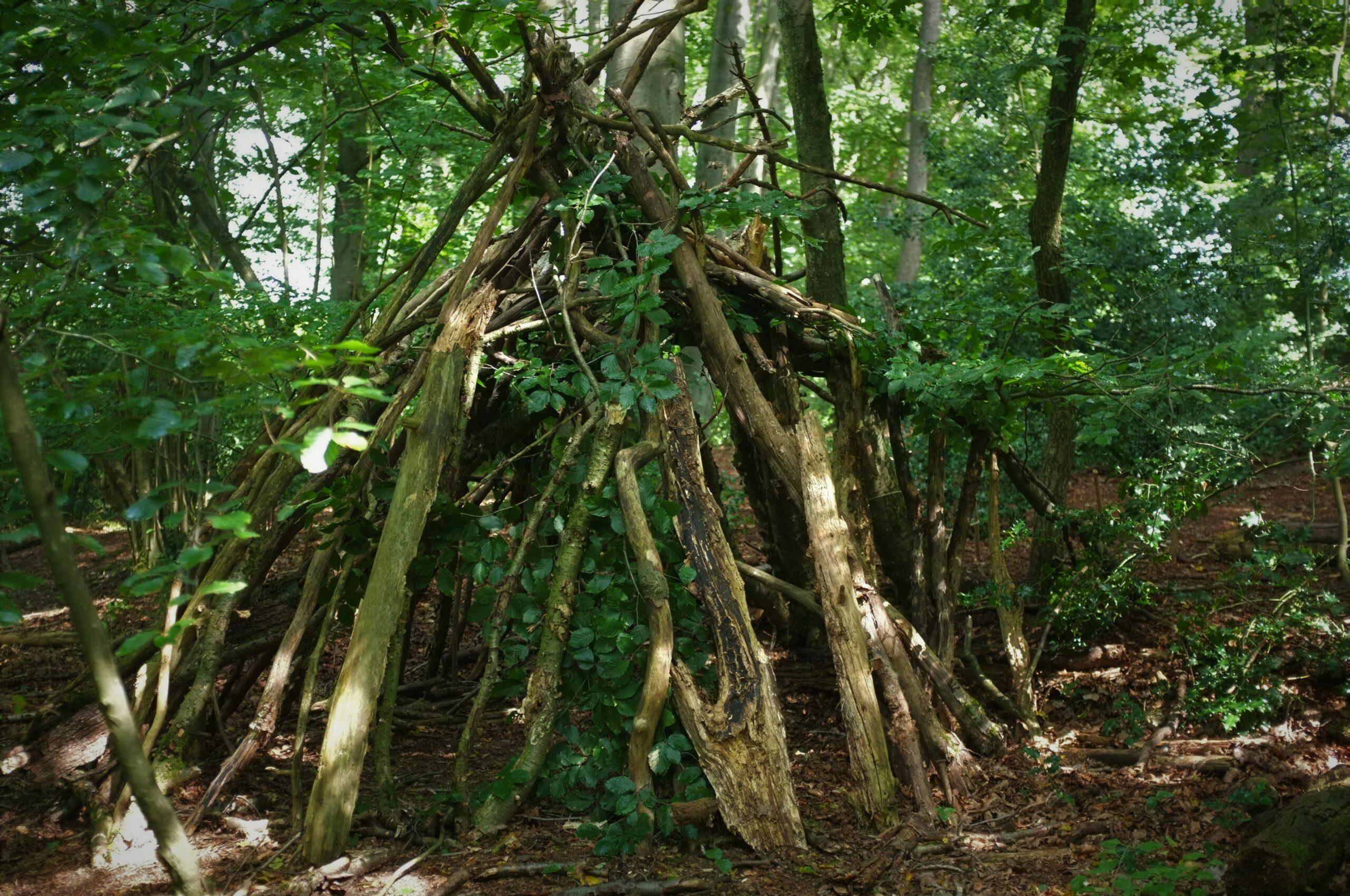 shelter bushcraft