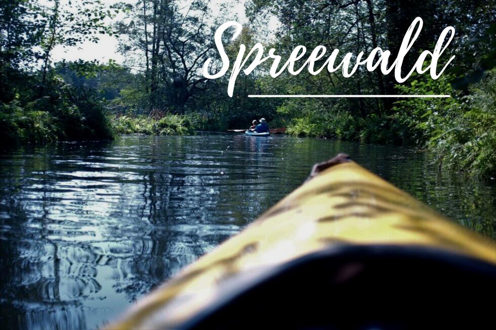 Spreewald – Die 5 besten Insider Tipps