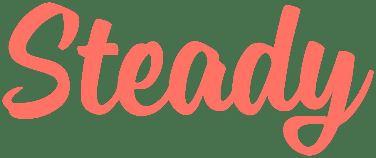 steady logo